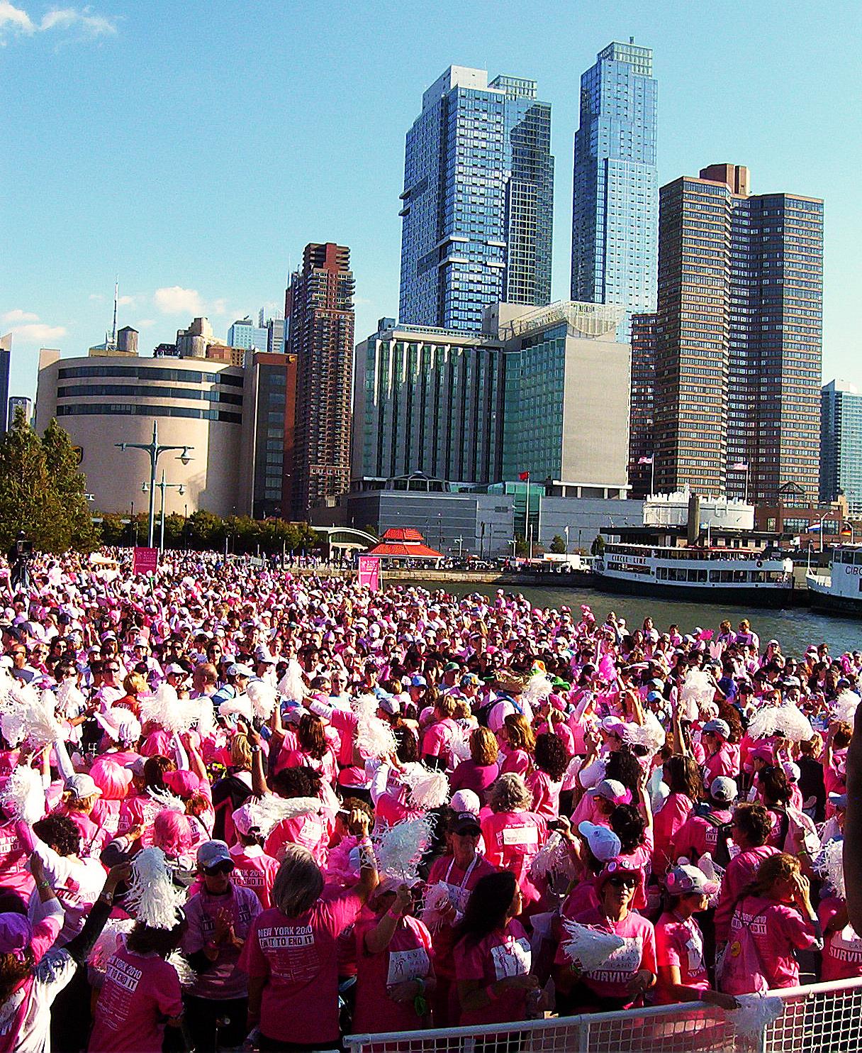 Breast Cancer Politics Lotus Editions